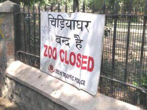 delhi-zoo