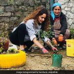 Kangana Ranaut Birthday: 31वें जन्मदिन पर लगाए 31 पौधे, परिवार संग कुछ यूं बिताएंगी वक्त