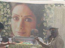 श्रीदेवी का राजकीय सम्मान के साथ अंतिम संस्कार के लिए किसने दिए थे आदेश, RTI में हुआ खुलासा