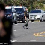 कैलिफोर्निया में यहूदी मंदिर पर गोलीबारी, एक महिला की मौत, 3 घायल