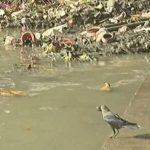 गंगा और बंगाल: 'लाइफलाइन' कही जाने वाली नदी अपने अंतिम पड़ाव पर भी बदहाल